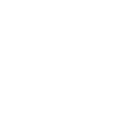 Democratic Party of Georgia